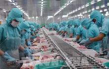 Gần 700 doanh nghiệp Việt được phép xuất khẩu thủy sản vào Đài Loan