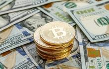 Bitcoin lao dốc mạnh sau khi lập đỉnh, thời gian tới sẽ diễn biến thế nào?