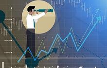 REE, VGC, THD, VPG, TDG, LCG, HDC, L14, SVN, CSC, SHG, C71: Thông tin giao dịch lượng lớn cổ phiếu