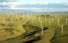 Quảng Trị quyết định cho nhà đầu tư thuê đất triển khai dự án điện gió Liên Lập với tổng vốn đầu tư gần 2.000 tỷ đồng