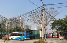 Vì sao đất dự án bỏ hoang tại Hà Nội khó thu hồi