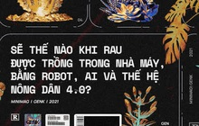 Sẽ thế nào khi rau được trồng trong nhà máy, bằng robot, AI và thế hệ nông dân 4.0?