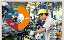 Hướng tới mục tiêu 1,2 - 1,5 triệu doanh nghiệp: Kỳ vọng nội lực Việt