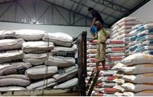 Kim ngạch xuất khẩu gạo của Campuchia giảm hơn 44%