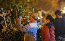 Chợ hoa lớn nhất Hà Nội tấp nập trước ngày 8/3