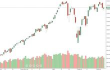 """Xu thế dòng tiền: Nghẽn hệ thống làm """"méo mó"""" đánh giá thị trường"""
