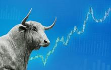 """MBS: """"Các thông tin vĩ mô trong và ngoài nước đang ủng hộ nhịp tăng của thị trường, VN-Index hướng tới vùng 1.300 điểm"""""""