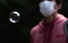 Nhà đầu tư F0 ở Mỹ thừa nhận có bong bóng thị trường nhưng vẫn rót tiền bất chấp