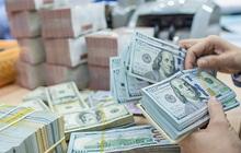 Đồng VND đang đối diện áp lực giảm giá
