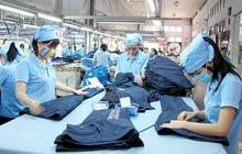 EVFTA có hiệu lực 8 tháng, Việt Nam xuất khẩu 4,8 tỷ USD hàng hóa vào EU