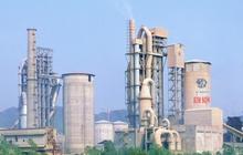 Xi măng Bỉm Sơn (BCC) bị truy thu và phạt hơn 3,4 tỷ đồng tiền thuế