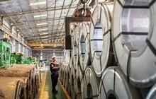 Nhờ tiết giảm chi phí, Thép Mê Lin (MEL) báo quý 1/2021 tăng gấp 41 lần cùng kỳ