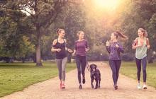 Dễ bắt đầu, duy trì đơn giản, nhưng bạn cần đi bộ như thế nào mới có hiệu quả với sức khỏe?