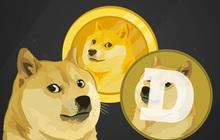 Tỷ suất sinh lời đạt hơn 8.000% từ đầu năm đến nay, bong bóng Dogecoin khi nào vỡ?