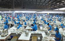 Cổ phiếu dùy trì mức giá 3 chữ số, Dệt may Thành Công (TCM) sắp phát hành hơn 9 triệu cổ phiếu thưởng