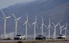 IEA: Cơ chế ưu đãi tại Việt Nam, Trung Quốc và Mỹ là động lực giúp sản lượng năng lượng tái tạo đạt kỷ lục