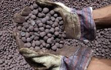"""""""Nỗi sợ hãi"""" có thể đẩy giá quặng sắt lên 250 USD/tấn"""