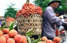 Xây dựng kịch bản tiêu thụ nông sản theo diễn biến dịch bệnh