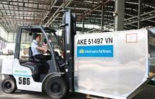 Bất chấp COVID-19, đây là những doanh nghiệp thuộc Vietnam Airlines Group vẫn báo lãi hàng trăm tỷ đồng, ROE ba chữ số