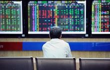 Đầu tư cổ phiếu Midcaps hay Bluechips?