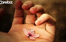 Đạo làm người: Lương tâm là nền móng, không có thì nhà sẽ sụp; đức hạnh như gốc rễ, không có cây sẽ gục mòn