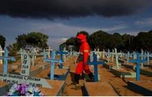 Covid-19: Số ca tử vong toàn cầu cao gấp đôi con số chính thức