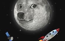 Tăng 12.000%, Dogecoin đã kích hoạt cuộc săn lùng những đồng tiền số 'ngon-bổ-rẻ' thay thế Bitcoin với giá chỉ 0,00001 USD