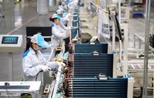 Kết quả phiên rà soát chính sách thương mại lần thứ 2 của Việt Nam tại WTO