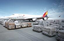 Đề xuất lập hãng IPP Air Cargo của ông Johnathan Hạnh Nguyễn có thể chỉ được xem xét khi thị trường hàng không phục hồi?