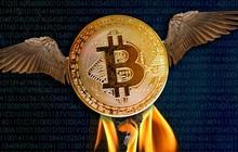 Bitcoin vừa có lần lột xác đầu tiên sau 4 năm sóng gió