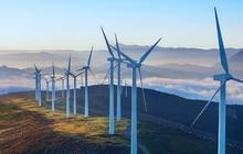 13 dự án điện gió không kịp bán điện trong năm nay sẽ phải chờ đến khi nào?