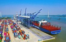 Nửa đầu năm 2021, hàng container qua cảng biển Việt Nam tăng 22%