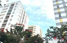 Tìm mua căn hộ chung cư giá hơn 1 tỷ ở đâu tại Hà Nội?