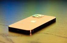 Fan Apple sợ iPhone 13 đen đủi