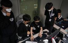 """Bên trong các """"lò eSport"""" ở Hàn Quốc: Học viên luyện tập 18 tiếng mỗi ngày, đào thải khắc nghiệt cho giấc mơ """"trở thành Faker thứ 2"""""""
