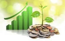 Thanglong Invest (TIG) chốt danh sách cổ đông phát hành hơn 9 triệu cổ phiếu trả cổ tức