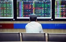 """Chuyên gia VinaCapital: Đầu tư cổ phiếu, trái phiếu, cổ phần tư nhân... là cách tuyệt vời để """"rót tiền"""" vào Việt Nam ở thời điểm này"""