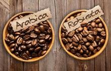 Giá cà phê thế giới tăng mạnh có là cơ hội cho ngành xuất khẩu cà phê Việt Nam?