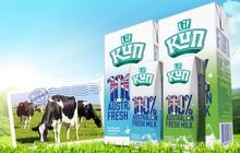 Sữa Quốc tế lột xác từ khi về tay Blue Point và Bản Việt: 6 tháng lãi trước thuế hơn 500 tỷ, gấp 3,3 lần cùng kỳ năm trước