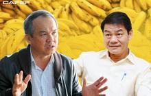 Thị giá giảm mạnh cùng việc không nhận được giấy tờ đất đâu, Thaco dừng việc mua thêm cổ phiếu HAGL Agrico (HNG)