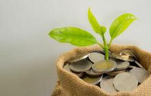 VLXD Biên Hòa (VLB) chốt quyền nhận cổ tức bằng tiền tỷ lệ trên 36%