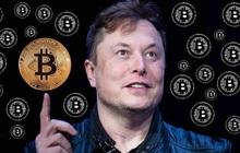 Đây là lý do tại quyết định nắm giữ Bitcoin trong dài hạn của Elon Musk là khoản đầu tư hiệu quả