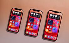 Nhiều mẫu iPhone, Samsung Galaxy đồng loạt giảm giá cuối tháng 7