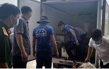Một nông dân Bạc Liêu tặng 10 tấn cá cho người dân vùng dịch
