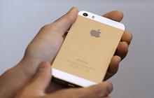 Một người vừa giành giải thưởng nhiếp ảnh năm 2021 với một chiếc iPhone 5S