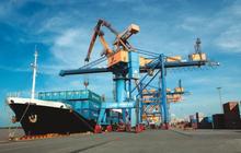 Cảng Đình Vũ (DVP) chốt danh sách cổ đông trả tiếp cổ tức bằng tiền tỷ lệ 25%
