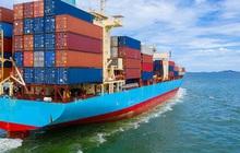 Cần chặn đà tăng giá cước tàu biển