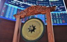Bộ Tài chính chỉ đạo giảm lô giao dịch HoSE xuống 10 cổ phiếu, tạo điều kiện cho các doanh nghiệp từ HNX về HoSE
