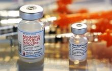 Pfizer vs Moderna: Cuộc cạnh tranh chẳng khác gì 'Coca vs Pepsi' trong mảng vaccine mRNA chống dịch Covid-19