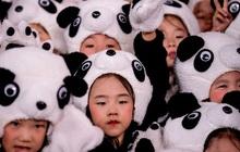 """Pha """"quay xe"""" thần tốc của Trung Quốc: Chỉ vài năm trước vẫn cấm sinh con thứ 2, giờ đã có thành phố phát tiền để khuyến khích đẻ"""